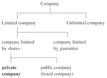 types of business companies pdf
